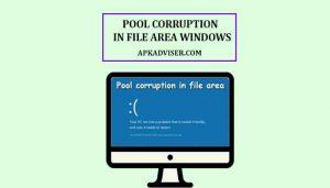Pool Corruption in File Area